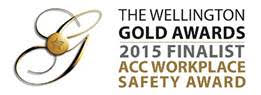 The Wellington Gold Awards - ACC Workplace Safety Award.jpg